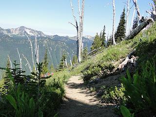 Walking down Crystal Peak trail.