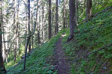 Lower elevation skyline trail