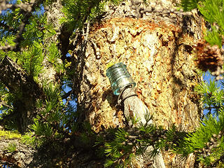 Old glass insulator on Milton, one of the few relics left.