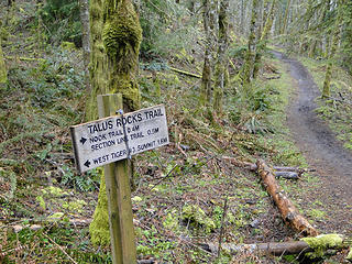 Talus junction on West Tiger 3 trail.