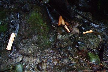 Unburned fire wood in the creek