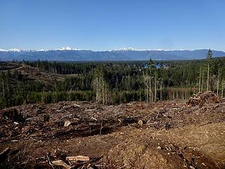Clearcuts allow for views at least.