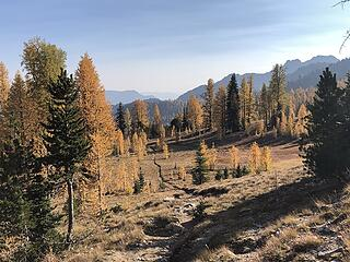 Summit Wilderness Trail that goes from Stehekin to a junction to Prince Creek