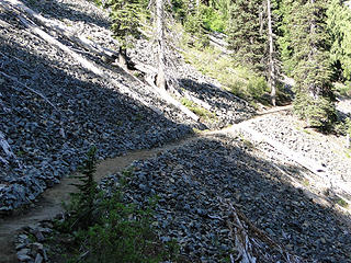 Trail crosses avalanche area a little past Crystal Creek crossing.