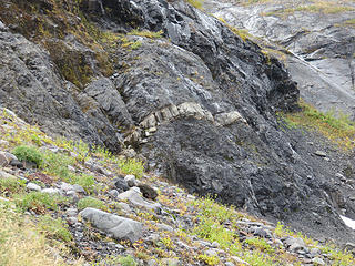 All of  the bedrock encountered on this hike, with exceptions at Kulshan Creek and Survey Rock, is sedimentary rock  of the Nooksack Terrane: conglomerate, sandstone, and shale. Once deposited in a submarine fan flanking a volcanic island arc between 170- 120 million years ago, it is much older than any of the volcanic rocks of the Baker volcanic field. Here you can see a  light-colored dike crosscutting  the older sedimentary rock.  This dike is associated with magma  from one of the volcanoes in this area, but not necessarily Mount Baker. edit: Turns out that this dike apparently hasn't been noted before or described in the technical literature. Always more work to do (geochem, petrology, dating).