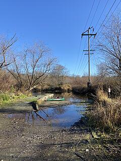 Mercer Slough Natural Area.
