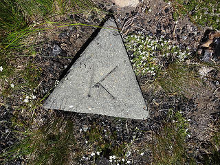 Marker on Harts Pass Pk summit, 6828.'