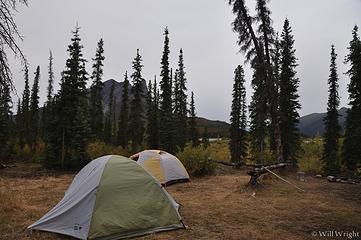 Dalton Campsite