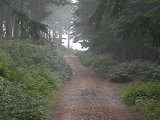 Last steeper road section to East Tiger summit.