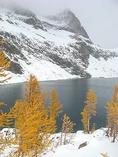 Larches & Lake