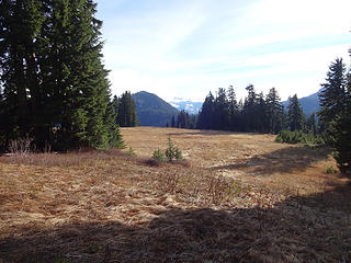 Looking back across the meadow from the trail that drops to Joan Lake from Johnson Ridge.