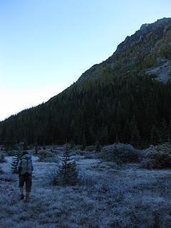 Frozen Painter Meadows