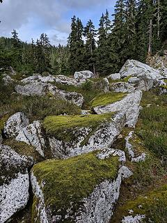 Mossy covered talus