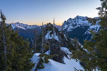 Cub peak at dawn