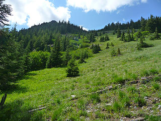 The trail peters out here as the route heads directly up this steep meadow