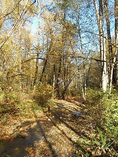 Swan Creek Park 102719 03