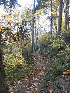 Swan Creek Park 102719 11