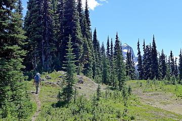 Hozomeen ridge trail