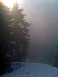 Sun glances off the trees in a sea of fog