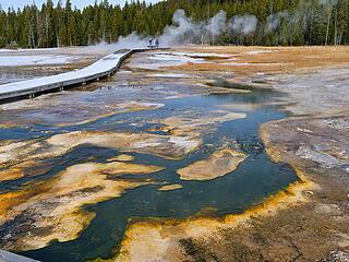 Upper Basin bacteria mats copy