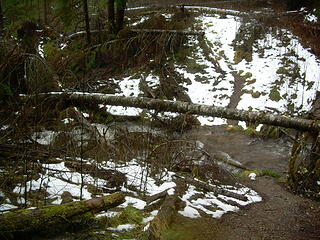Second Stream Winter