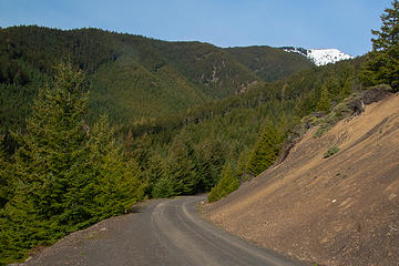 Baldy false summit from Baldy/Tyler spur road 04-16-2019