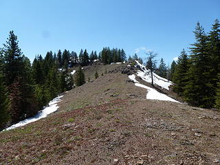 Typical terrain on the hike over to Driveway Ridge.