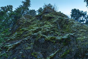 trailside frosty moss cliff