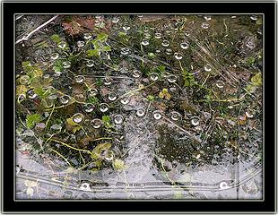 Ice Chaos, 1.24.08.