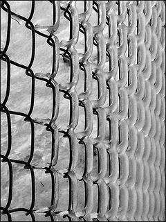 B&W Iced Chain Link Fence, 12.16.08.