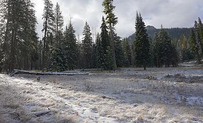 Tronsen Meadow