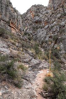 gully ahead