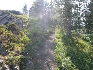 Trail heading up to Crystal Peak summit.
