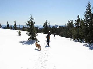Ridge walk heading towards lookout