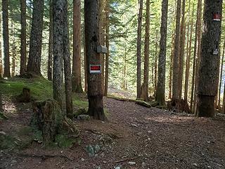 Monte mailbox