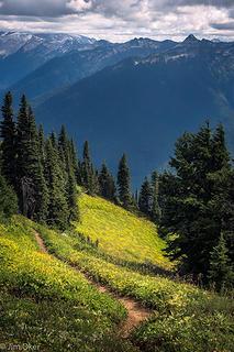 Green Ridge Trail (1 of 1)