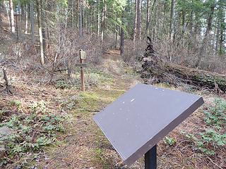 Beginning of trail in Chatcolet campground.