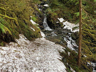 The Sultan River Trail 3/24/19