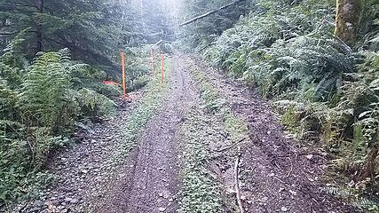 Sketchy access road