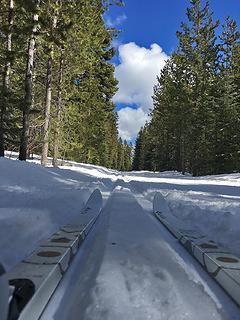 Swampy Sno-park Spring ski and snowshoe