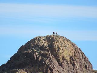 climbers on Ten Ewe