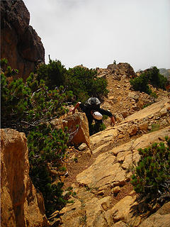 Amy on Descent