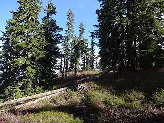The trail follows benches when near Captain Point.