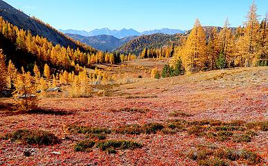 Beautiful reds and golds in the center of Horseshoe Basin