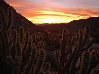 South Indian Canyon sunrise
