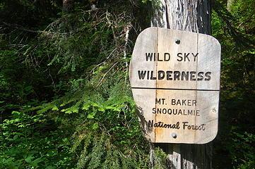 Near beginning of hike, West Cady Ridge trail