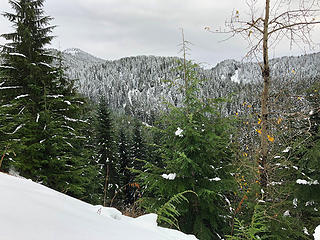 Trail to Mt.Stickney 11/25/18