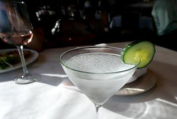 Hendrick's Martini