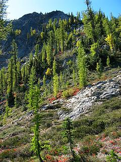 Larch's on Hock's NW ridge