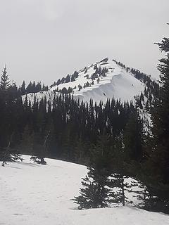 ridge up pt6537